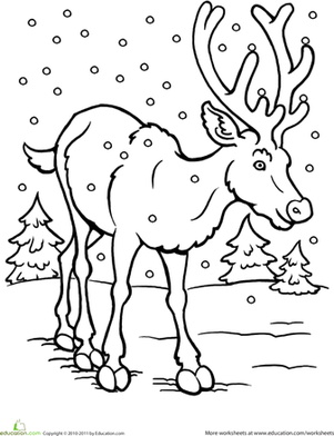 winter animals coloring pages color the reindeer worksheet educationcom animals coloring winter pages