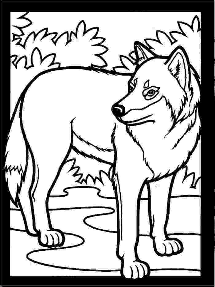 wolf coloring print download wolf coloring pages theme coloring wolf
