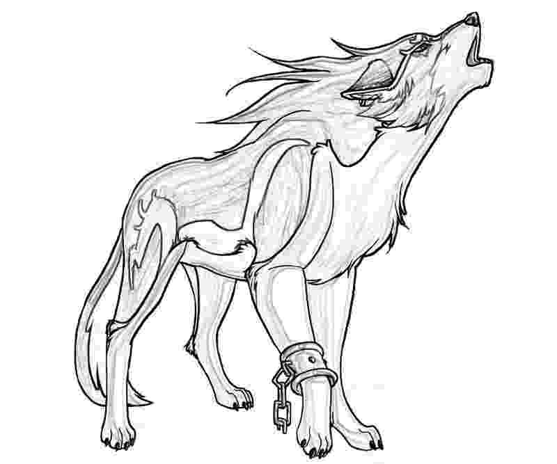 wolf coloring wolf drawing for kids at getdrawings free download wolf coloring
