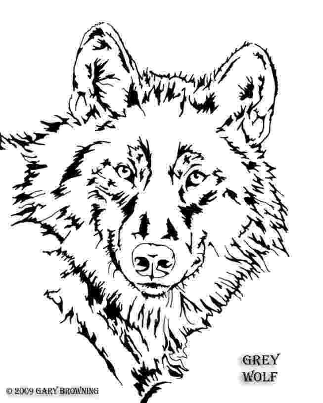 wolf cut out printable image result for free coloring pages of a wolf wolves wolf printable out cut