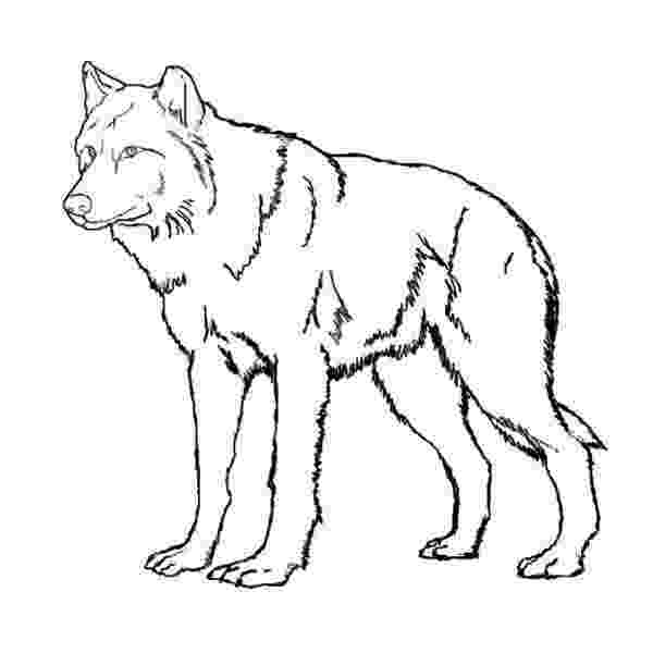 wolf cut out printable wolf template animal templates wolf out printable cut