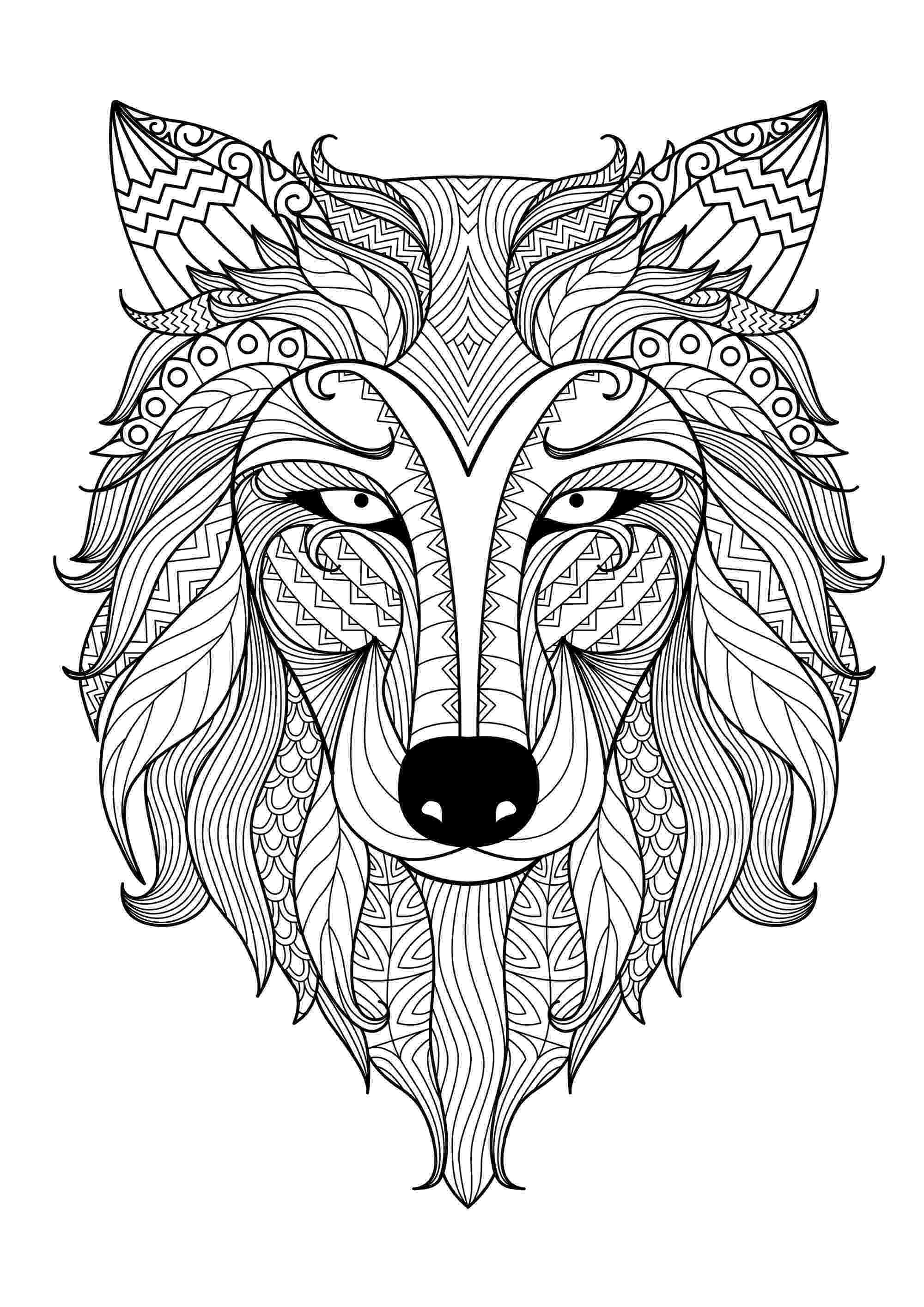 wolf face coloring pages wolf face coloring pages at getdrawings free download wolf coloring pages face