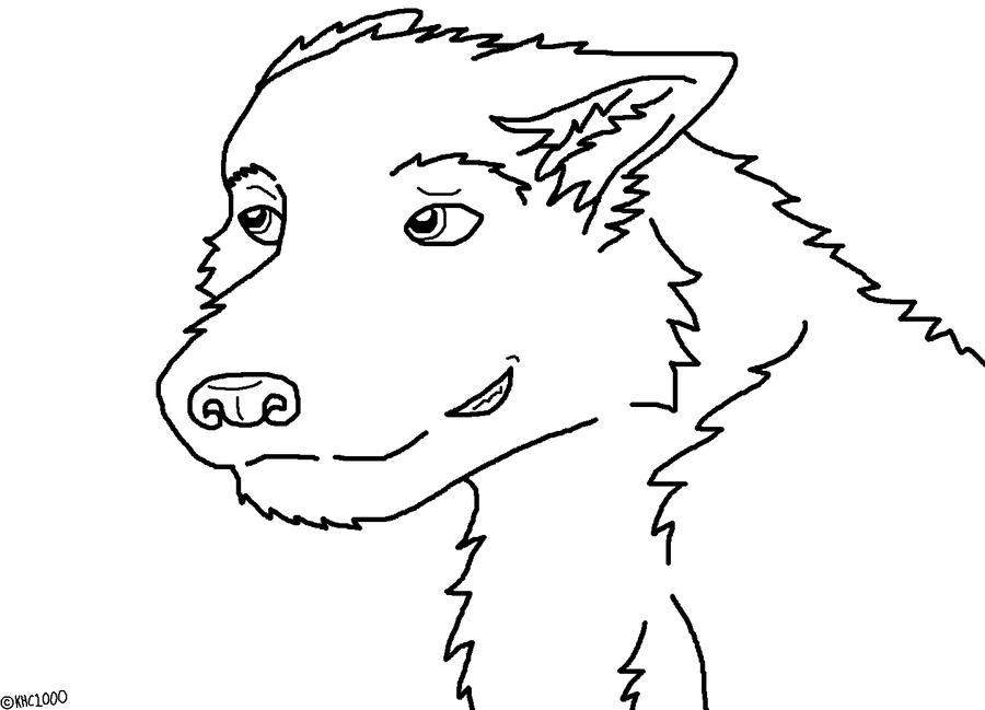 wolf face coloring pages wolf face coloring pages printable pages wolf coloring face