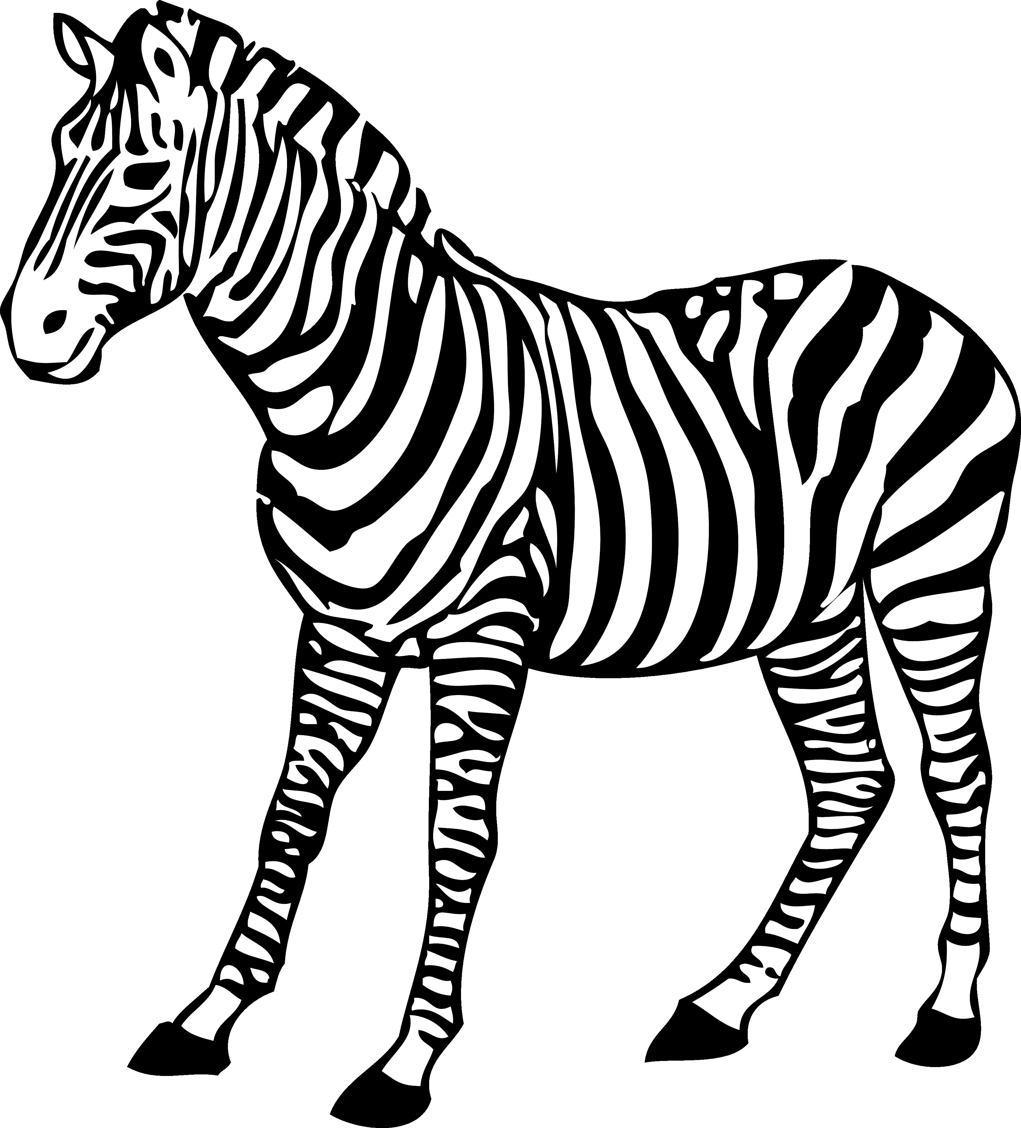 zebra sketch pin on drawings sketch zebra