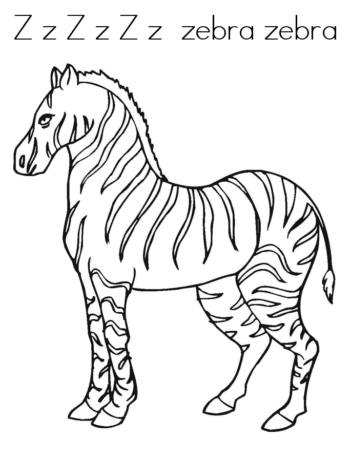 zebra to colour free printable zebra coloring pages for kids to zebra colour