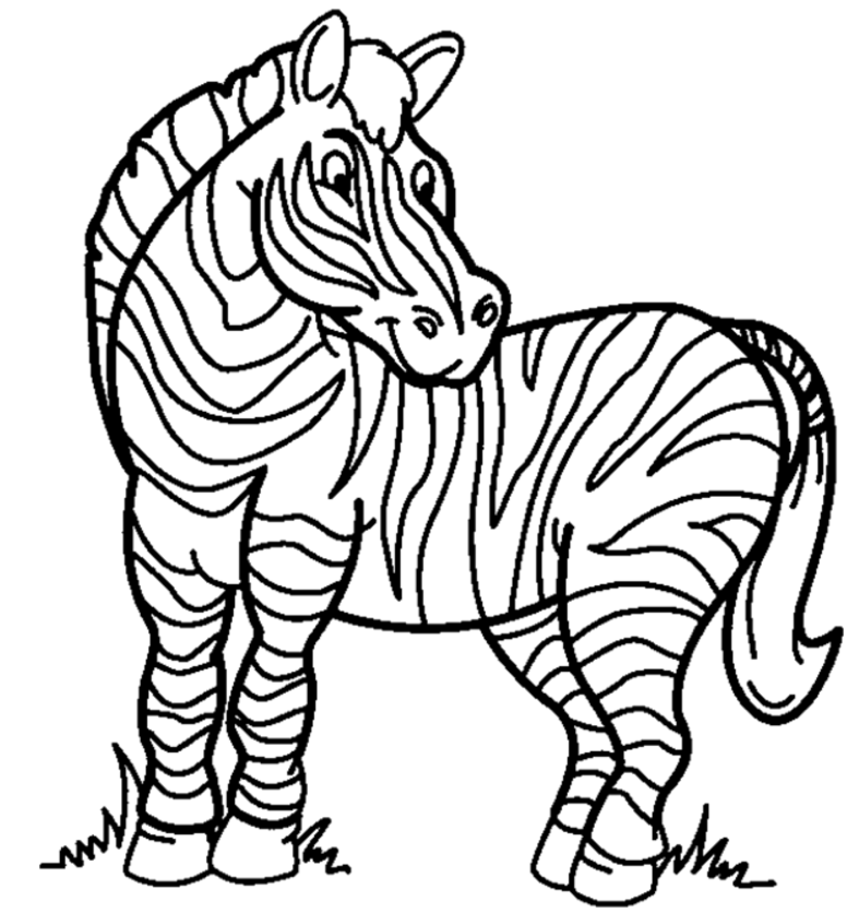 zebra to colour printable zebra coloring page coloringpagebookcom zebra to colour