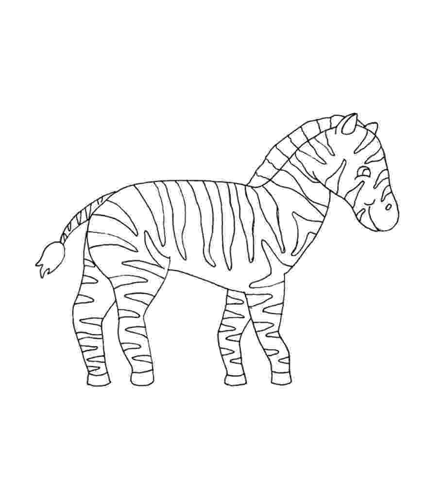 zebra to colour top 20 free printable zebra coloring pages online to zebra colour