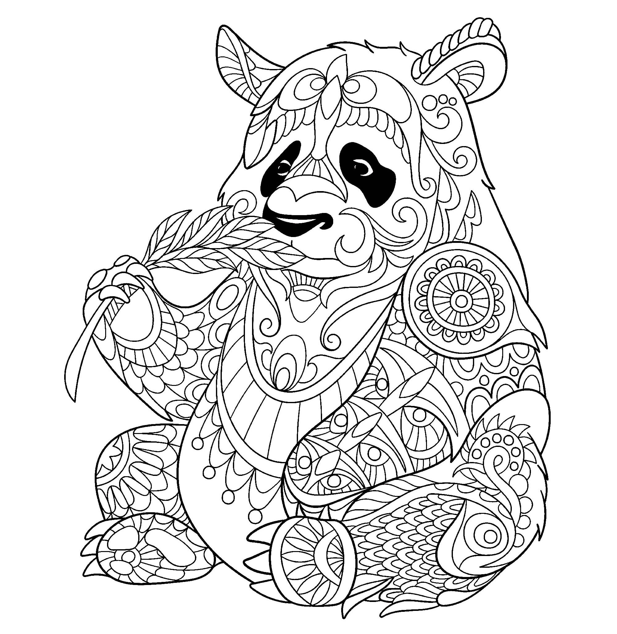 coloring panda bamboo lover black and white panda colouring pages  picolour coloring panda