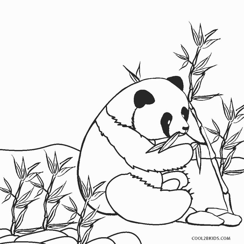 coloring panda free panda bear coloring pages coloring panda