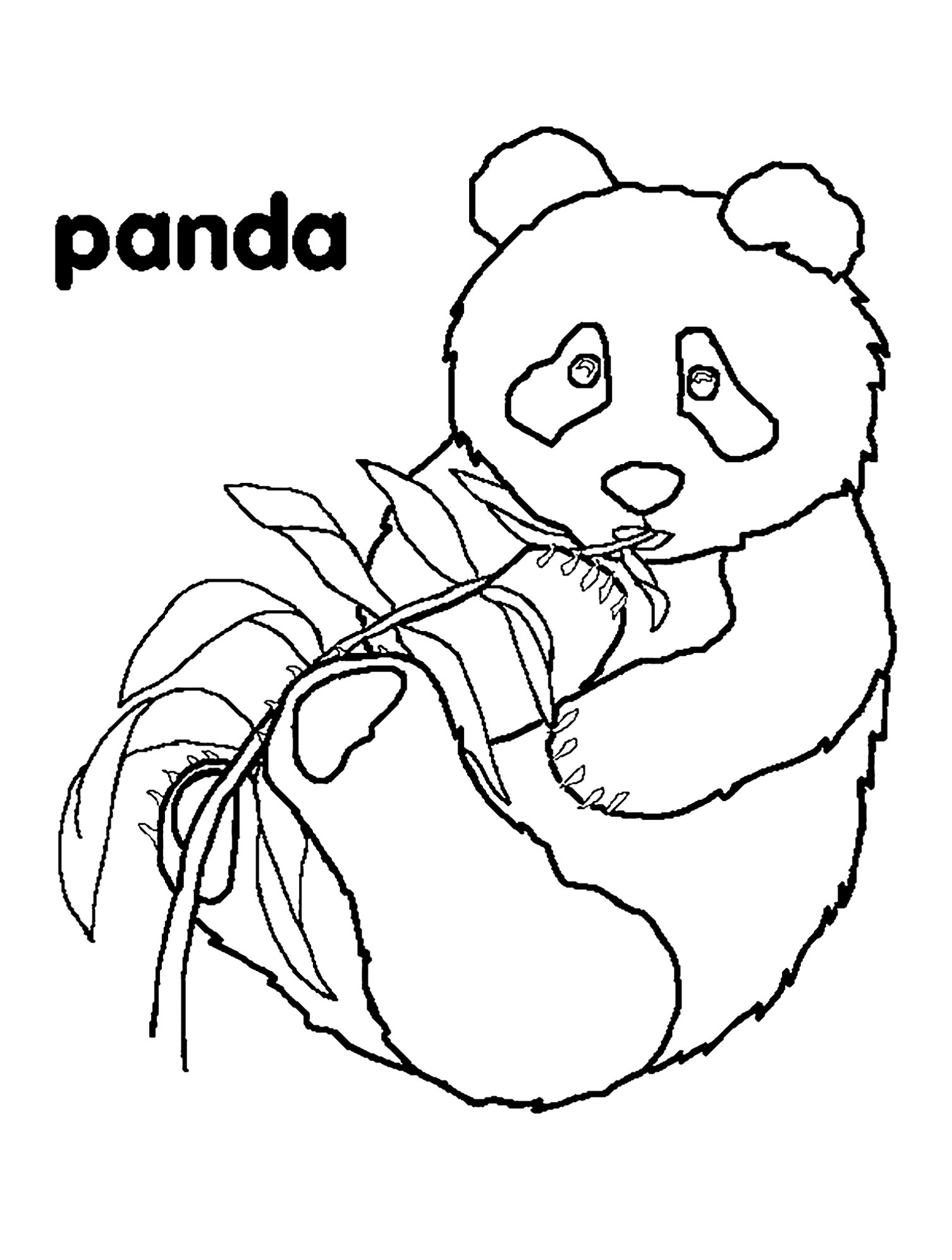 coloring panda panda drawing images at getdrawings free download coloring panda